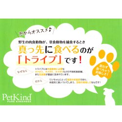 画像3: ペットカインド (Pet Kind) トライプドライ グリーンラム トライプ 11.34kg 【全年齢対応】【高品質ドライフード】